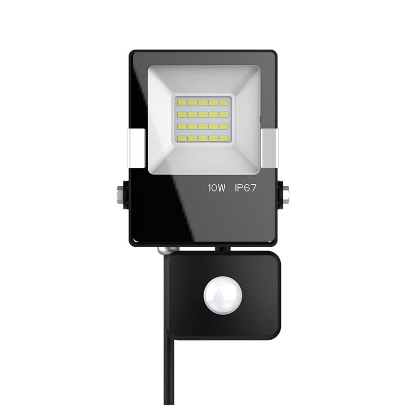 Proyector Led PRO SMD2835, 10W